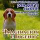 Historia 033 - Imaginacio?n e Ingenio