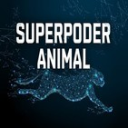 Superpoder animal: Suicidios de perros