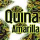 Nutribella - QUINA AMARILLA