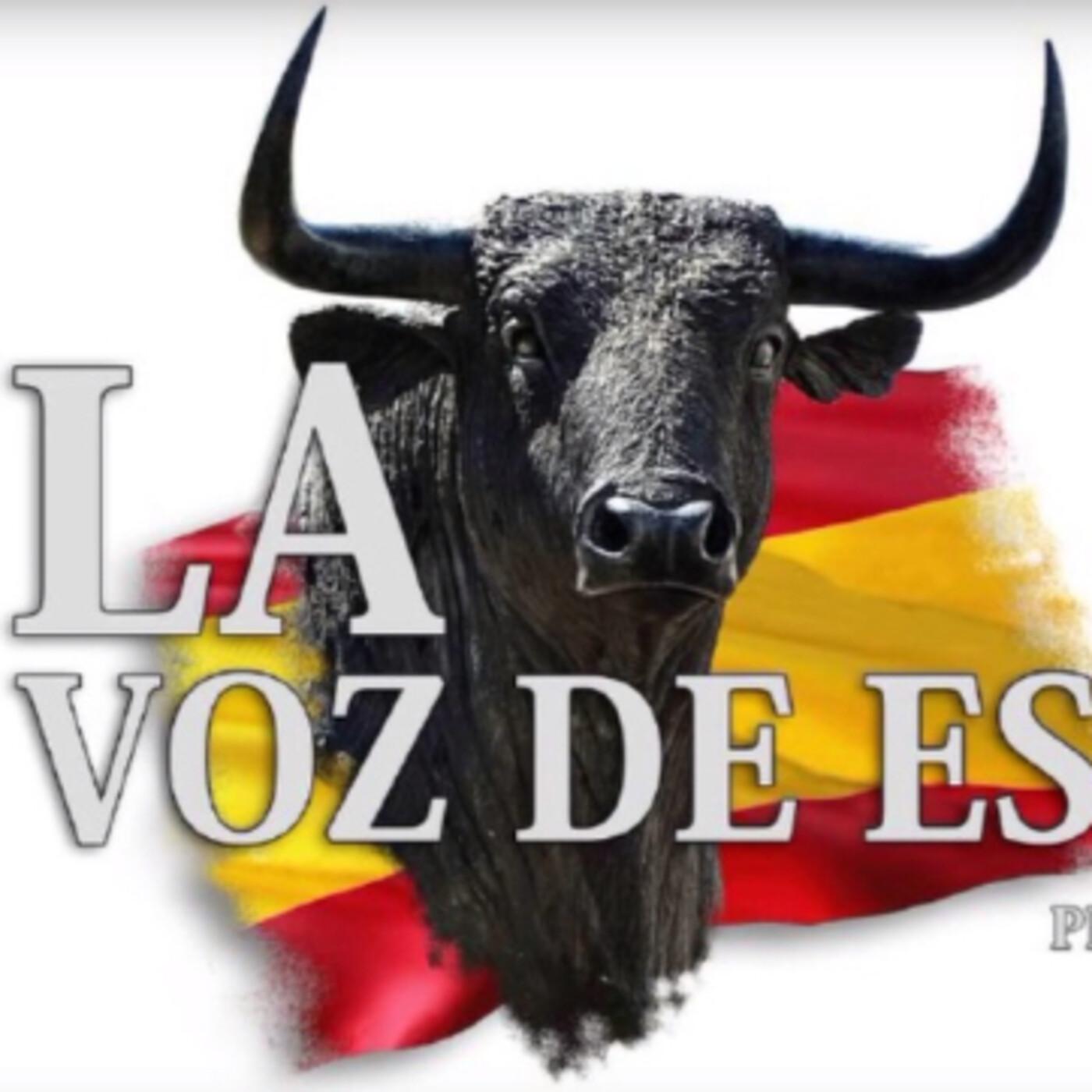 LA VOZ DE ESPAÑA Ed: 218 (28 de Abril)