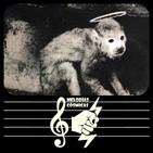 Melodías Cósmicas 009. Pixies, Son Volt, Datura4, Zebra Hunt (17-4-19)