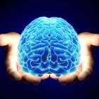 FDLI 3x07 El poder del cerebro, engaños e ilusiones