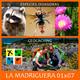 LA MADRIGUERA en pruebas 01x07 - ESPECIES INVASORAS / GEOCACHING (09 - 06 - 2016)