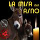 La Misa del Asno - (04-10-2019) - Pilares