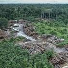 La deforestaciÓn 2