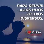 Padre John. Reflexión evangelio madrugada del 04 de Abril de 2020