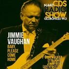 Capítulo 447 El fabuloso Jimmie Vaughan