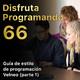 Guía de estilo de programación Velneo (parte 1)