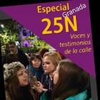10 - Especial 25N (2): Manifestación 25N, Granada