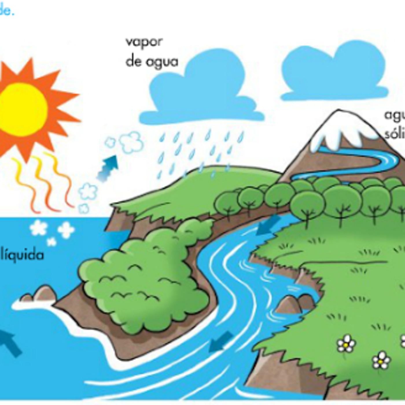 Ciclo Hidrológico Ciclo Del Agua En Camilo Botero En Mp3 19 05 A Las 23 03 49 03 13 18792983 Ivoox
