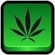 INFORME DROGAS #01 historia antigua de la marihuana