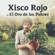 Entrevista a XISCO ROJO