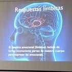 ¿Qué es Neurocoaching?