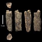 La Brújula de la Ciencia s08e01: Una mujer con madre neandertal y padre denisovano