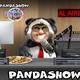 Panda Show - la novia suiza le cayo la migra