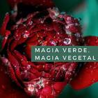 Magia Verde, magia vegetal. Cap. 6 Las semillas de las Diosas