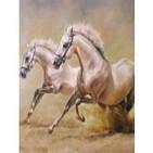 Los caballos del gran espÍritu