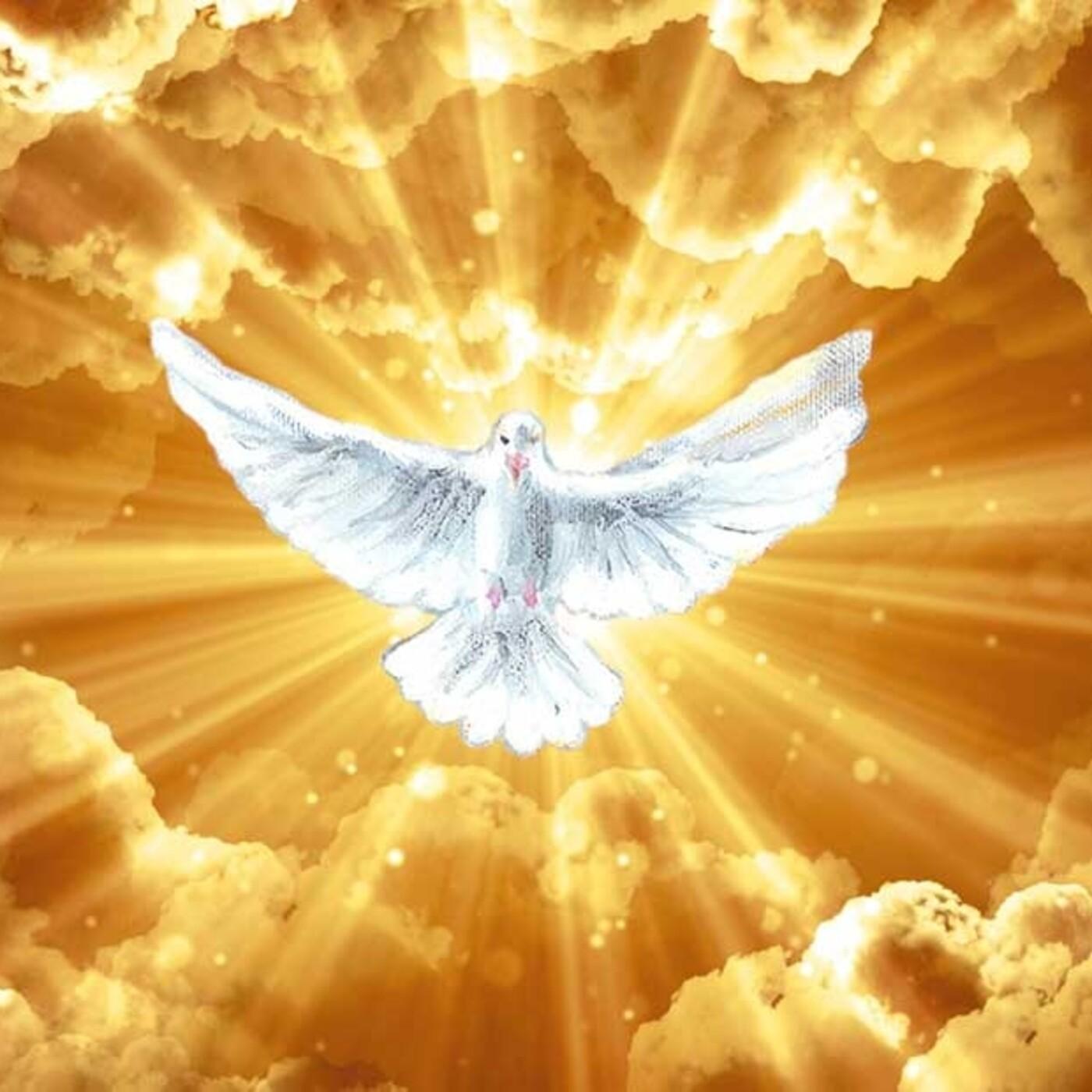 19 Octubre 2020 - Llamado de Amor y de Conversión de Dios Espíritu Santo