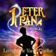 Cap. 11-Peter Pan: El Cuento de Wendy