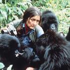 BioBalears 115 - Dian Fossey