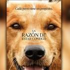 La razon de estar contigo | BANDA SONORA |Full Album|A Dog's Purpose