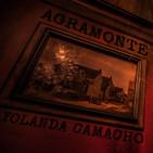 ADELANTO: Agramonte, de Yolanda Camacho (Audiolibro)