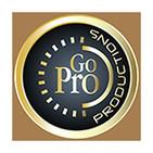 Go Pro 7 pasos para convertirse en un profesional del Mercadeo en Red