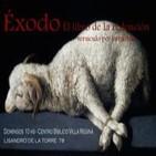 Éxodo 36:8-40:38 - Habitaré entre mi pueblo - EXOS42