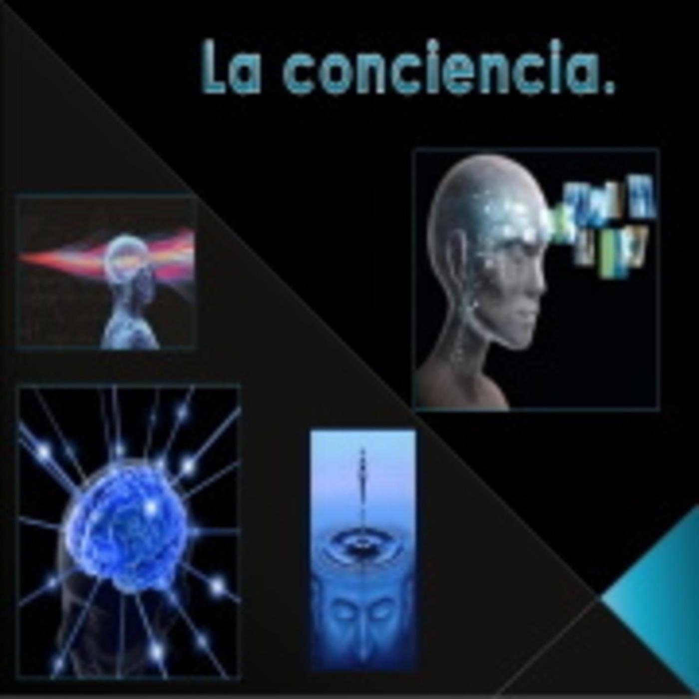 Descifrar la conciencia