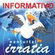 Informativos A5 T2 P43 - 18-11-2019