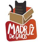 Madriz De Gatos (Un Madriz de cine) 01 - Banco de España