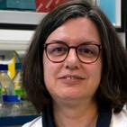 Ingeniería de Genomas de Coronavirus - Dra. Sonia Zuñiga -