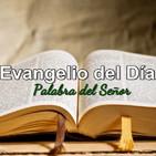 Evangelio del día... lunes 17 de junio de 2019