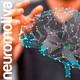Neuróbica para el cerebro 13