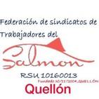 Gustavo Cortez, Trabajadores del salmón Quellón
