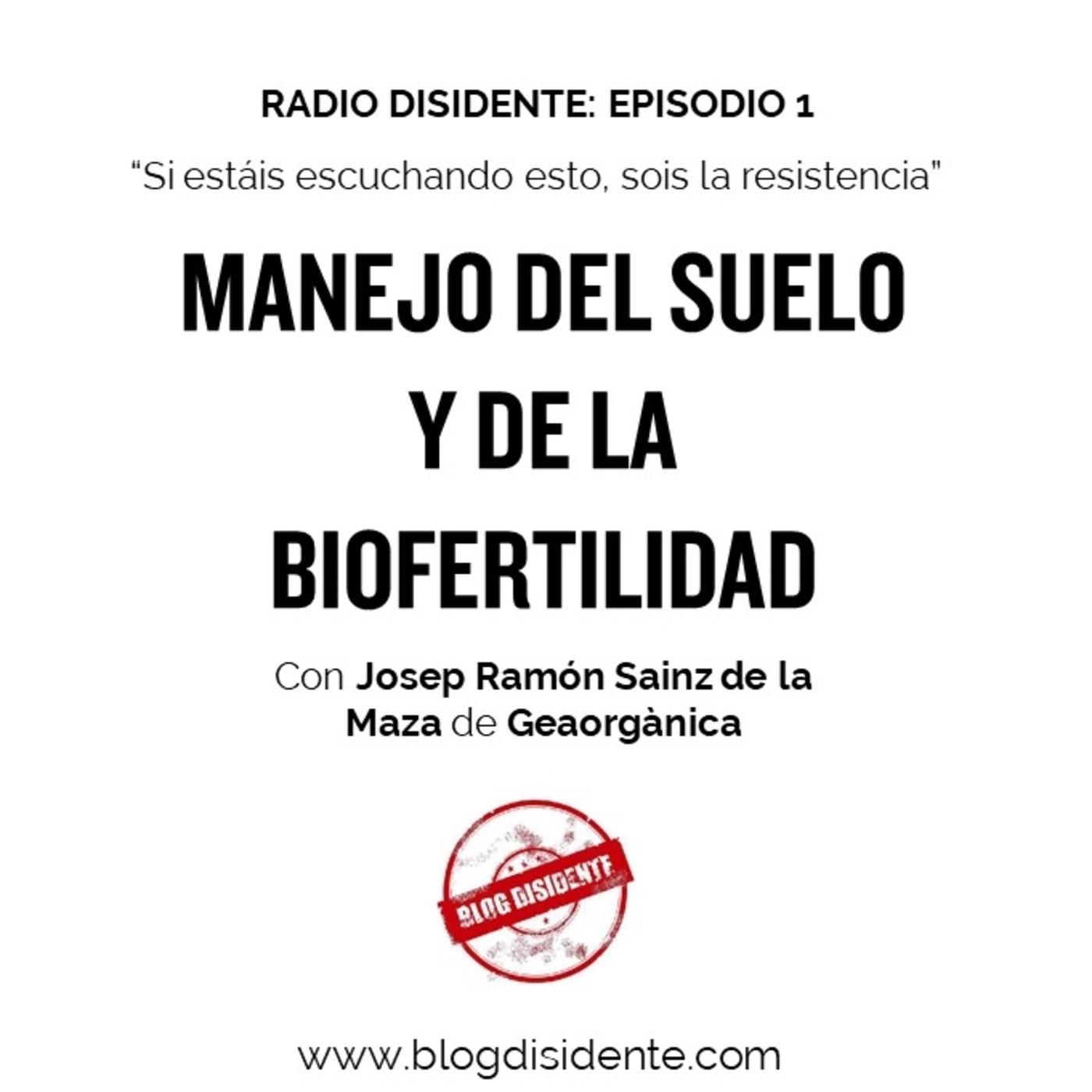 Radio Disidente