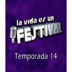 La Vida Es Un Festival 14x10