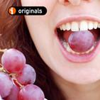 Aprendiendo a catar uva en el viñedo