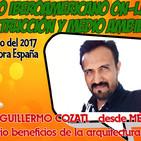Guillermo Cozalt - Bio Beneficios de la Arquitectura Fractal - I CONGRESO DE BIOCONSTRUCCIÓN