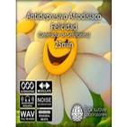 Antidepresivo, Afrodisíaco, Felicidad, Serotonina-