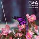 Programa 157 - V Gala Solidaria Abrazos - Cura El Dravet