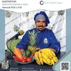 GastroFonía