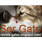Ser Gato Programa 5. Especial: Gatos y bebés (27-10-2012)