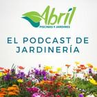 ± aÑo nuevo podcast nuevo !