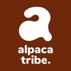 Choosing our alpacas