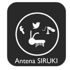 Antena Siruki