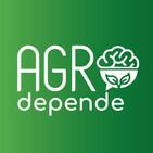 #53º Agro Depende - Startup, Gestão e Tributação.