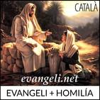 Diumenge III (A) d'Advent