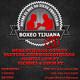 Boxeo Con Cebreros & Encinas - EP210 - Previa #WilderFury2 análisis completo ????????