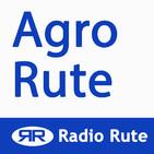 Agro-Rute 2019